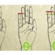 Serçe Parmağınıza Bir Bakın; Uzunluğu Sizinle İlgili Birçok Şeyi Açığa Çıkarıyor!