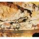 İlk İnsanlarda Sanatın Başlangıcı ve Tarihi İncelenmesi